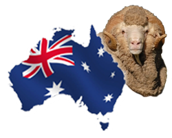 We use 100% Australian Sheepskin